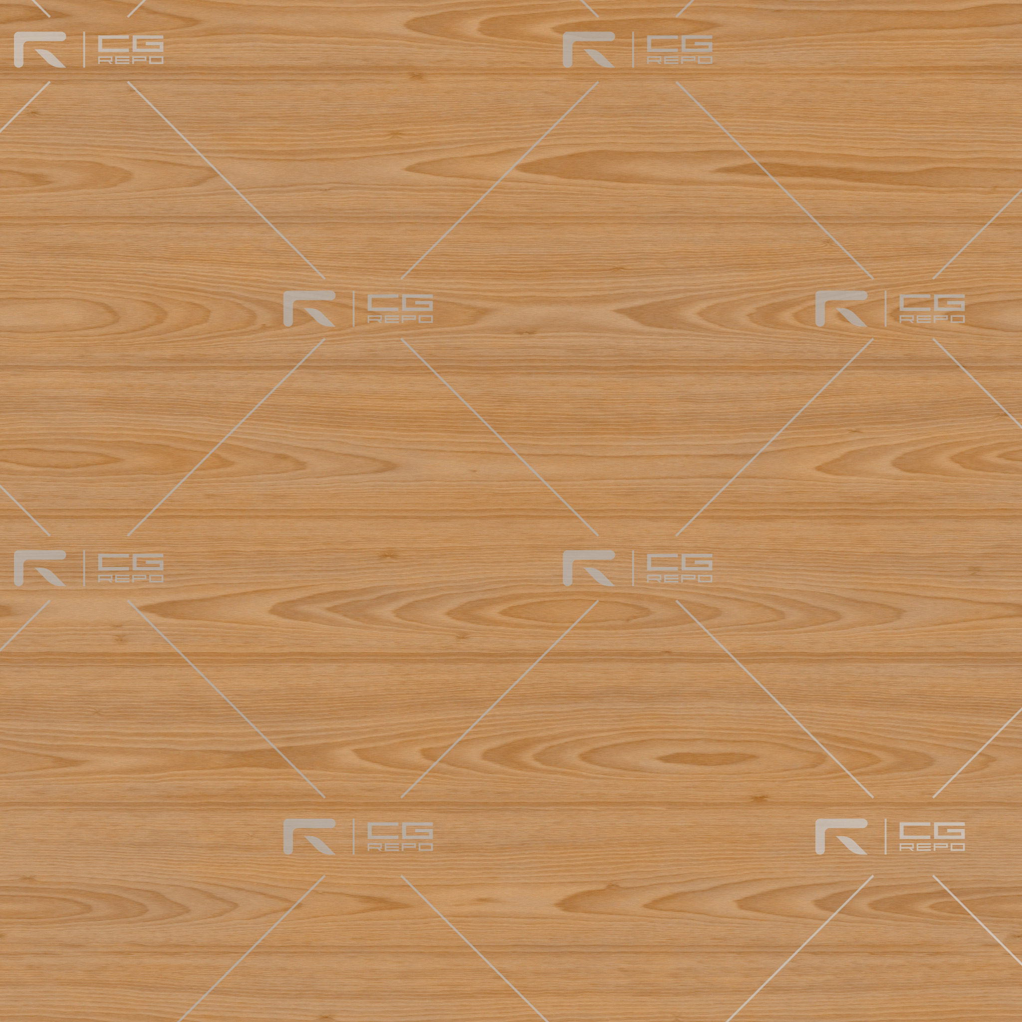 Beech - Natural - Cathedral Shape (Crown) BaseColor Texture